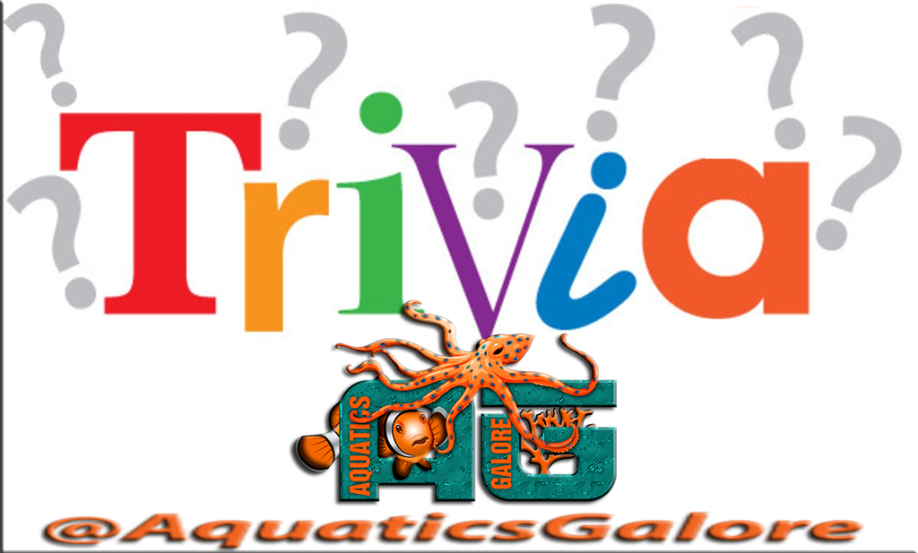 Win Jessie Keith Whitley and Alexis Gomez Tickets Trivia Question